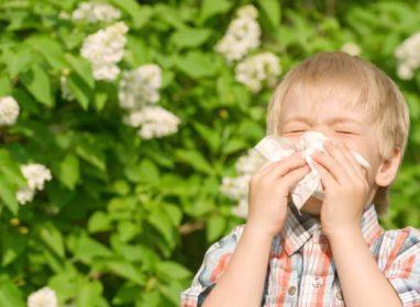 Аллергия у детей: симптомы, развитие, лечение.