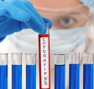 Тесты на коронавирус: виды и достоверность